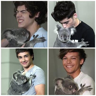 Harry&Louis&Zayn&Liam