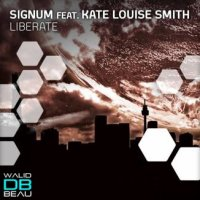 Signum Feat Kate Louise Smith / Liberate (2011)