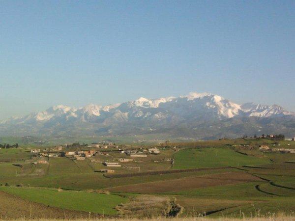 La belle rebelle kabylie