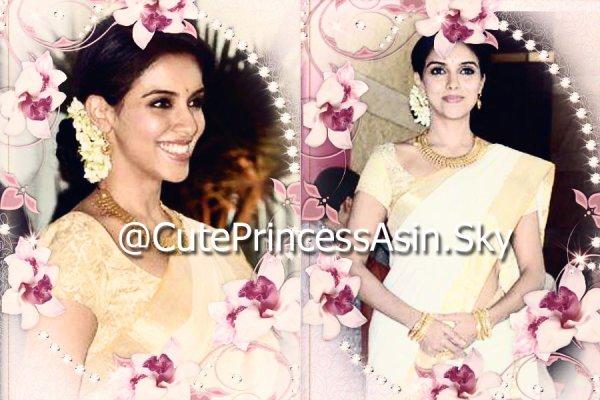 Asin @ Riteish & Genelia Wedding