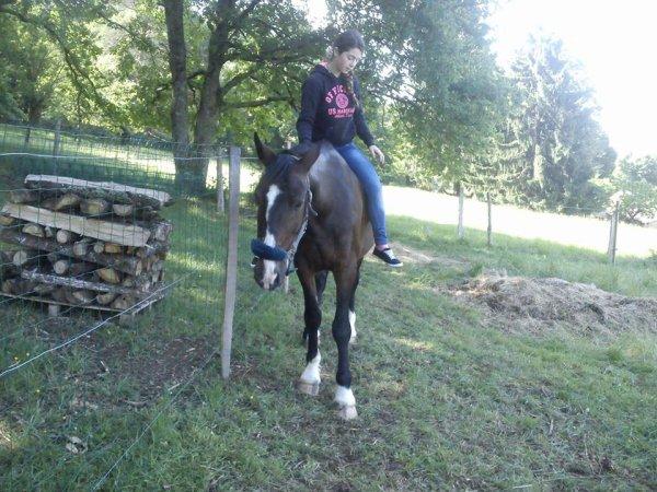 moi et mon cheval en liberte