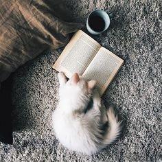 [Top ten tuesday n°11] Les 10 romans qui ont eu ou ont une certaine influence sur ma vie.