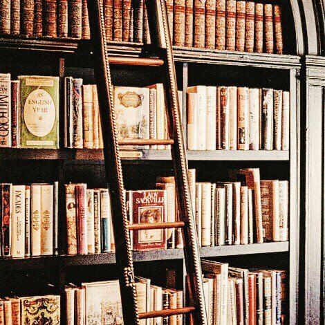 Tag - Ma bibliothèque de rêve