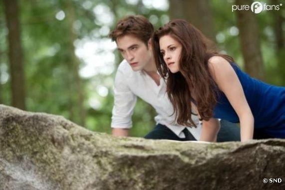 Twilight 5 : Rien à voir