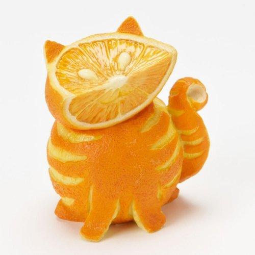 chat orange niam