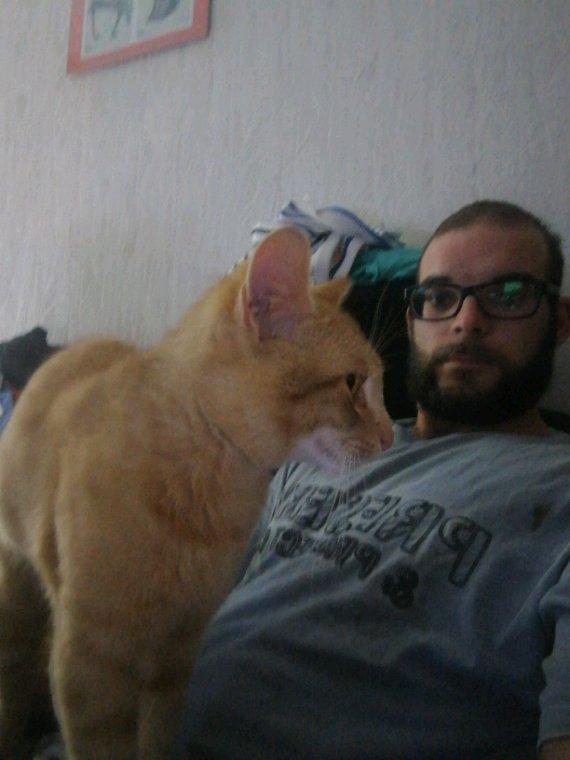 Mr le chats