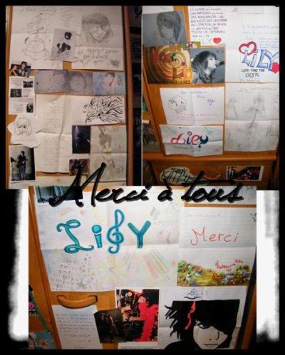 Le mur des Fans a Lily