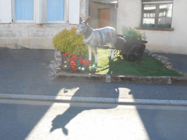 Sort. Ext 18/05/14 - Phalsbourg (1)