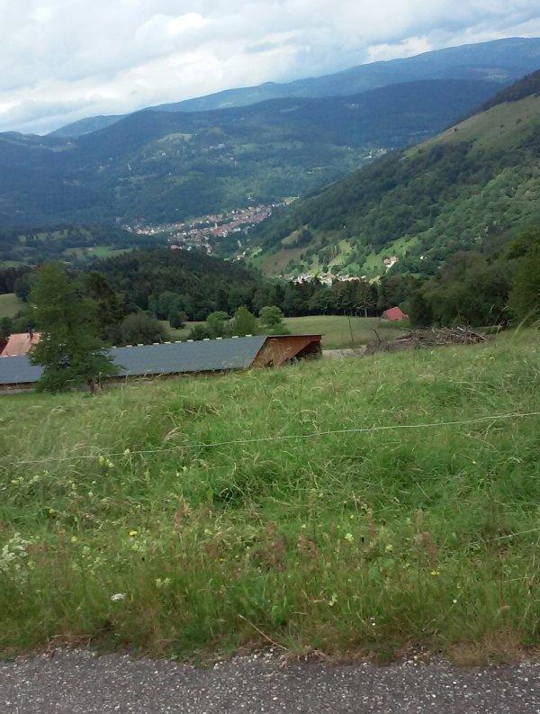 Brevet des Vosges à Brice. (1)