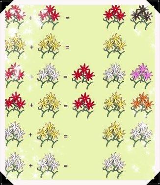 Voila comment faire des fleurs hybrides