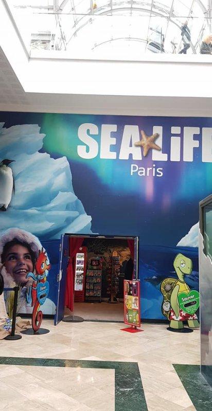 Dimanche 09 Juin 2019 - Sortie de fin d'année  : Visite de l'aquarium Sea Life Paris Val d'Europe et Accrobranche au parc Aventure Davy Crockett