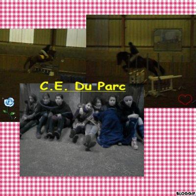 Challenge du 22.O1.12. Avec les Fous du CE du Parc... ♥
