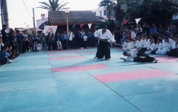 Blog de aikidoalger aikido