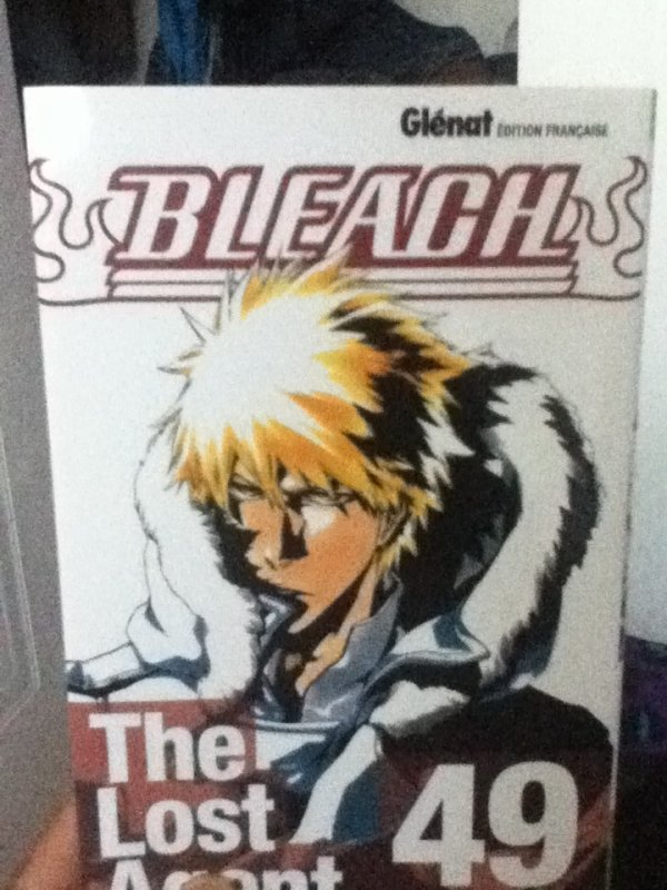 Bleach: The Lost Agent