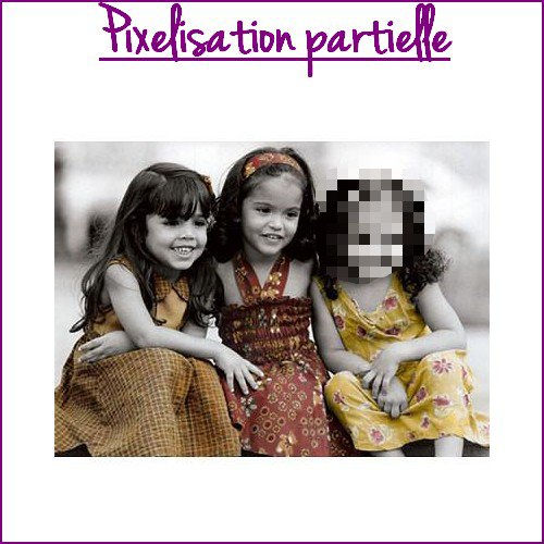 ♥ pixelisation partielle ♥