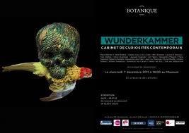 Wunderkammer @ Botanique.