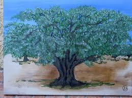L'olivier de mon pays