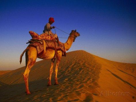 Le tour du désert à dos de chameau