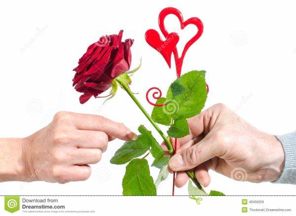 JE T'OFFRE CETTE FLEUR- A une fleur-*********************************       Pour t'embellir encore ce jour***** Je t'offre cette petite fleur***** Dedans il y a un grand amour***** Qui réchauffe à souhait le c½ur***** Pour t'embellir encore ce jour  ************************* SUITE