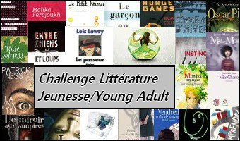 1 er  livre Challenge Littérature Jeunesse/Young adult  GRAAL NOIR T°3