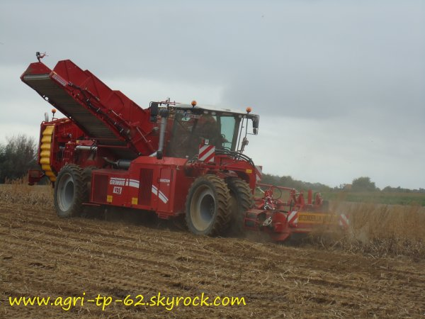 Arrachage des pommes de terre 2011