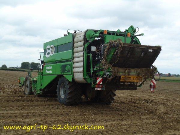 Arrachage de pommes de terre 2011