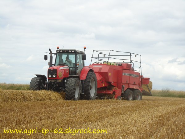 Dans les champs 2012 dans l'Indre (36)