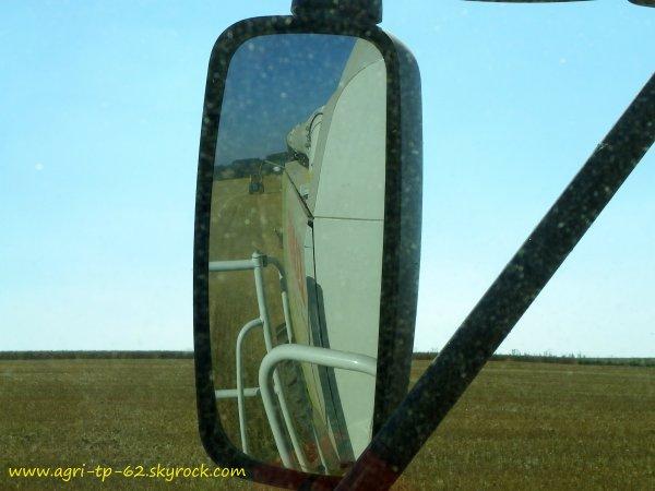 Moisson de blé 2012
