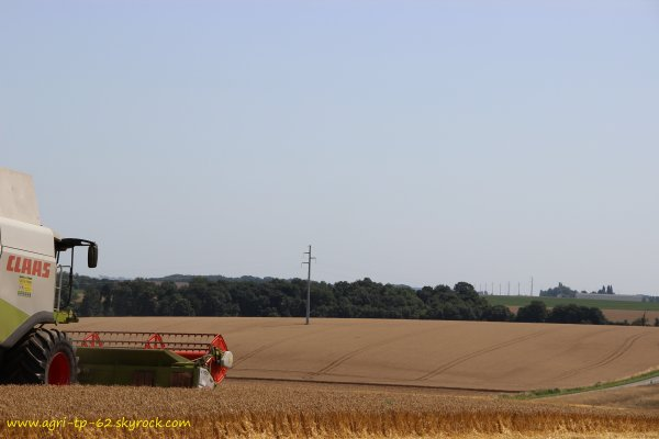 Moisson des blés 2013 dans l'Aisne (02)