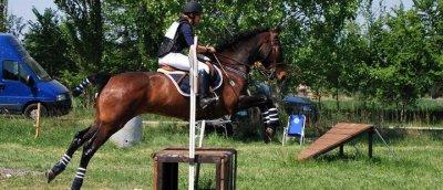 Championnats inter-régional de CCE à Aubignan