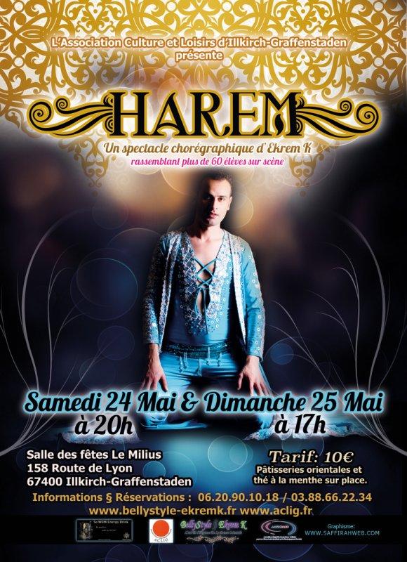 """SPECTACLE DE DANSE ORIENTALE """" H A R E M """" 24 et 25 Mai 2014"""