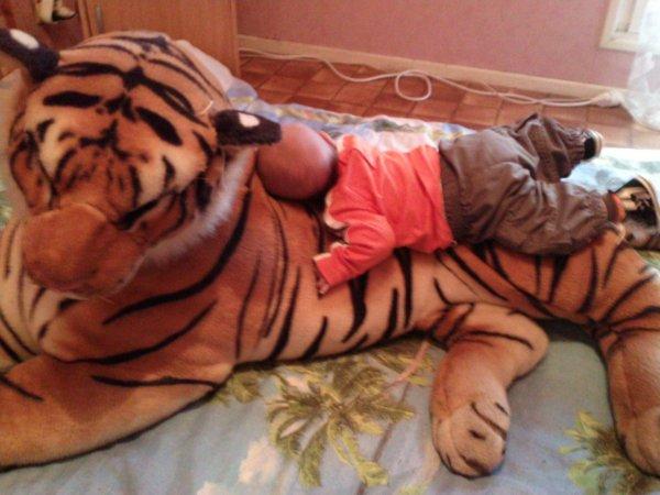 Mon ange & son tigre !