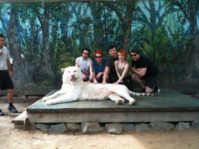 Paramore en Australie