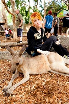 Paramore en Australie #2