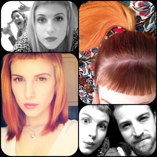 Interview Tumblr de Hayley et Jeremy