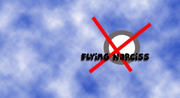 Illustration Flying Narciss