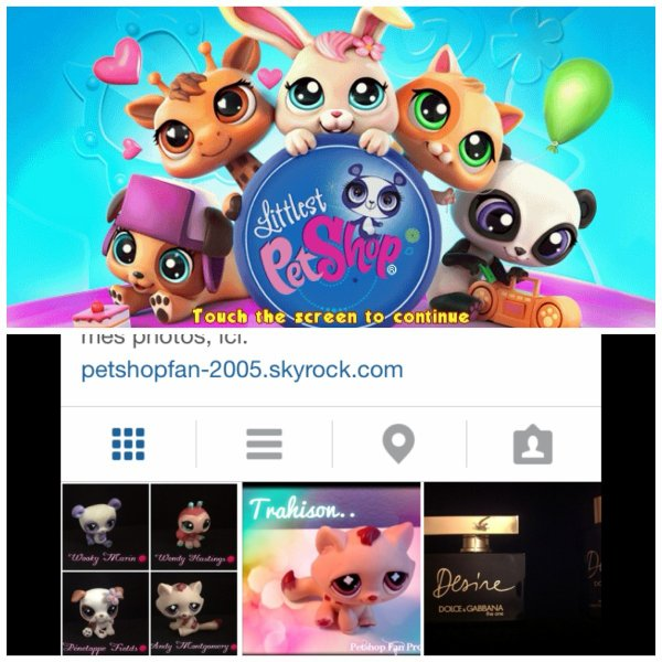 Présentation de ma chaîne You Tube et de mon compte Instagram !