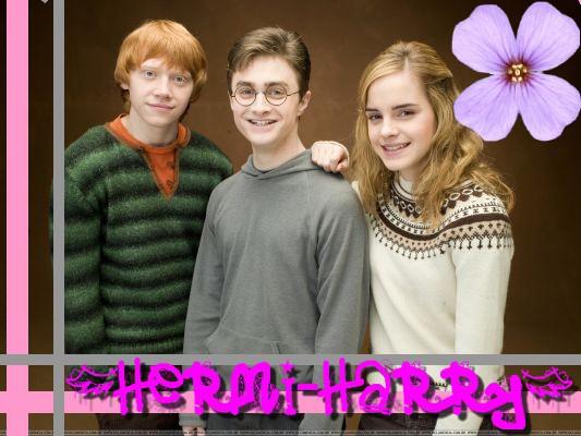 Hermione et Harry un amour cacher