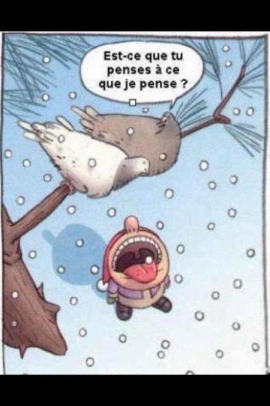Des petits soucis avec la neige