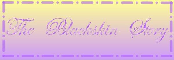 2°.Présentation : Mon blog