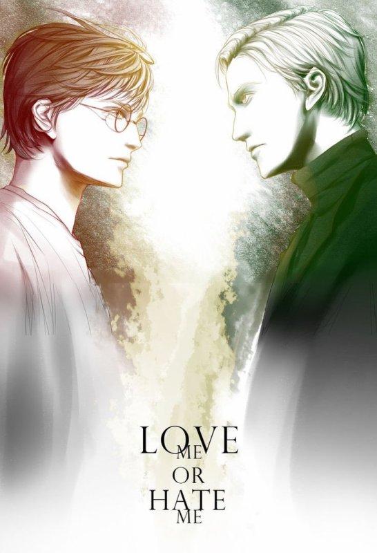Os Harry Potter yaoi!?