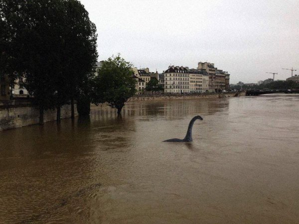 Sacrée inondation...!