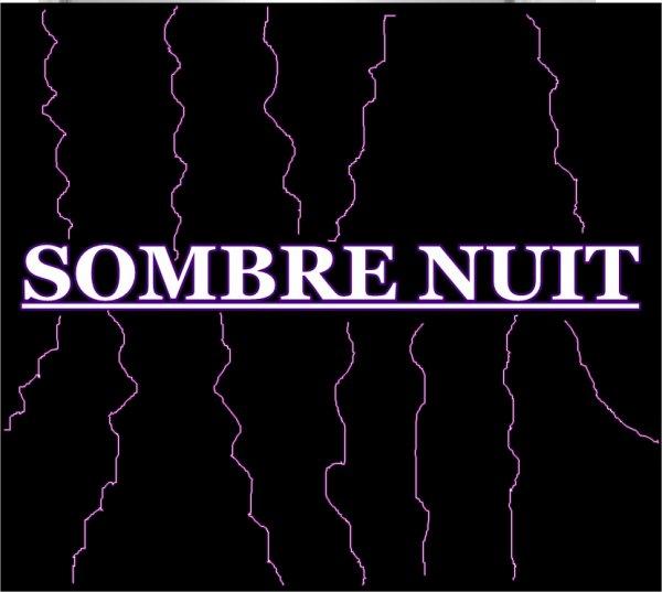 fly / Lalelilolu feat Audioman - Sombre nuit (2013)