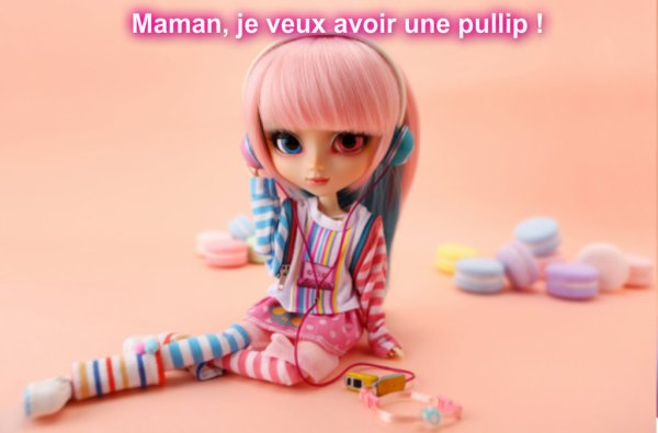 Le Journal Pullip