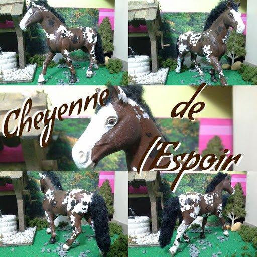 Cheyenne de la Chance