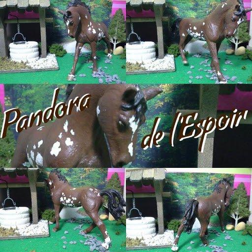 Pandora de la Chance