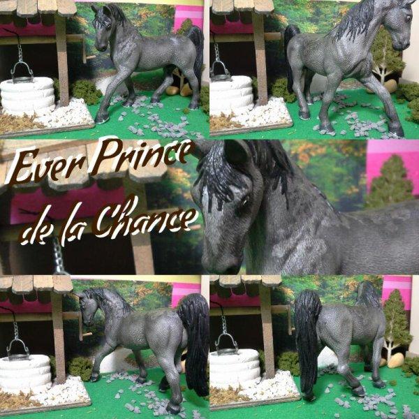 Ever Prince de la Chance