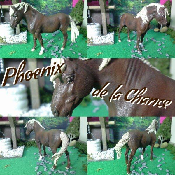 Phoenix de la Chance