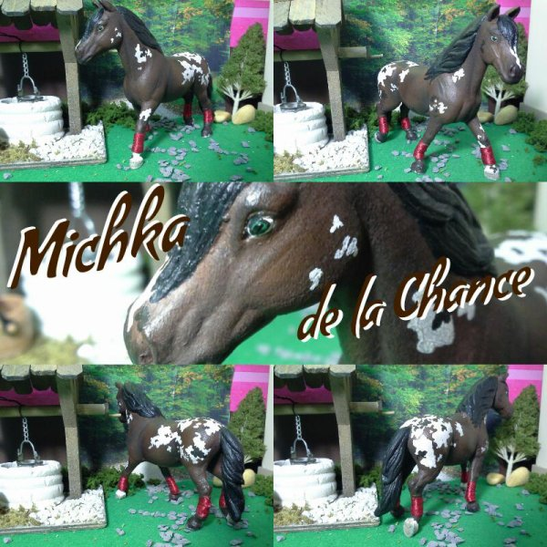 Michka de la Chance