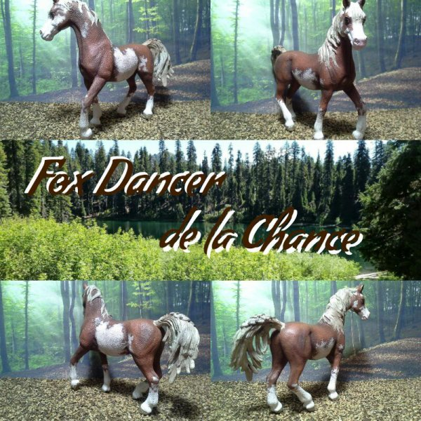 Fox Dancer de la Chance